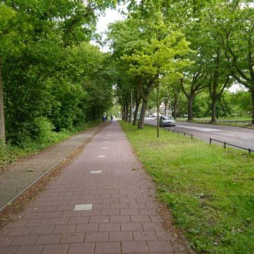 On the cycle paths around Duinrell