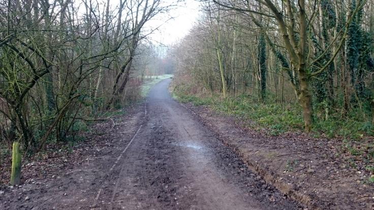 Muddy path towards the Mersey