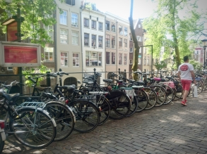 Plenty of bikes parked on the streets