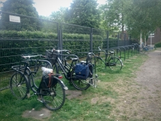 Extensive parking in Griftpark