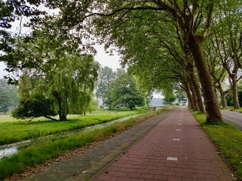 Riding alongBackershagenlaan on the way out of Wassenaar