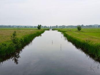 The view fromHorst en Voordelaan