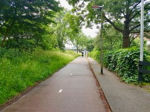Cycleway next to Europaweg, lots of greenery and very pleasant to cycle along