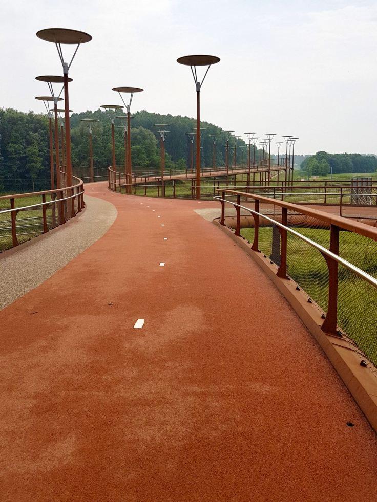 Looking across theBurgemeester Jan Waaijerbrug bridge